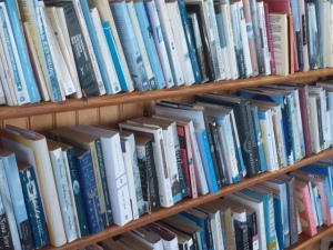 Bookshelves, Cuttyhunk Island cottage, 2015